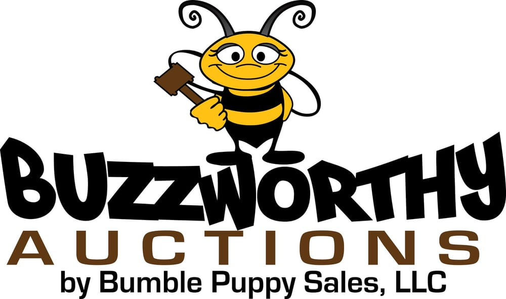 ONLINE AUCTIONS- Updates and Changes for Buzzworthy